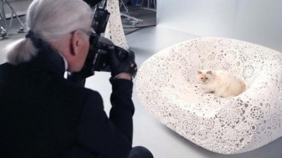 Звичайна кішка Карла Лагерфельда заробила $3 млн (фото)