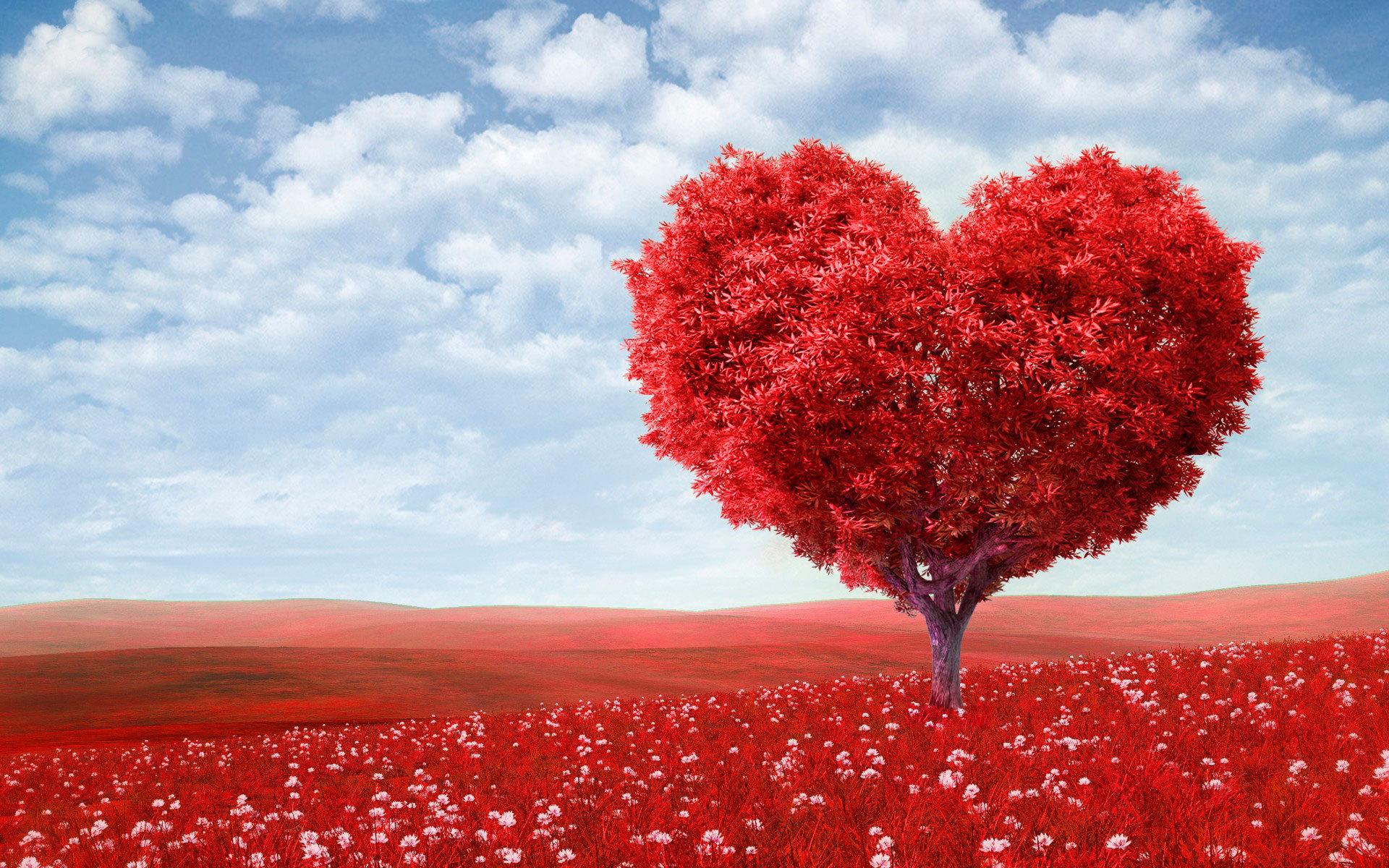 Мережу підірвав «старий гуцульський звичай» на День святого Валентина