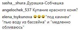 snymok_10